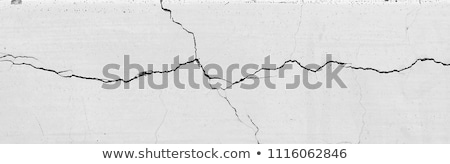 Cracked wall Stock photo © luissantos84
