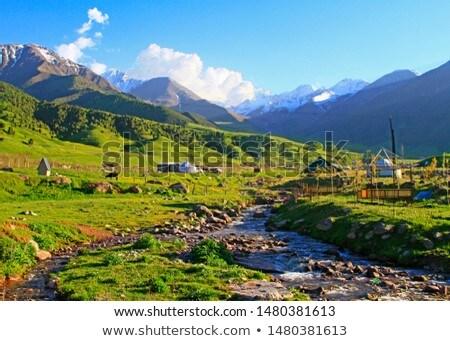 Orman ev dağlar nehir park manzara Stok fotoğraf © barsrsind
