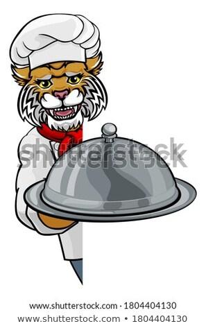 Vadmacska szakács rajz étterem kabala felirat Stock fotó © Krisdog