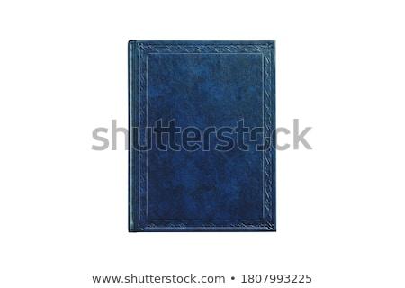 Blue books Stock photo © antonprado