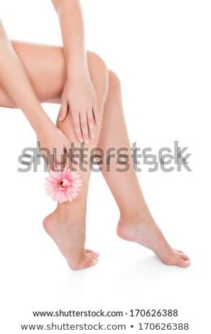 Sağlıklı bacaklar gül yaprakları beyaz güzel vücut Stok fotoğraf © bloodua