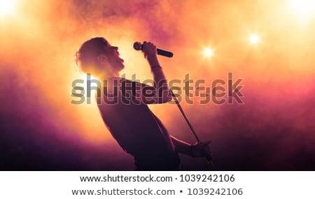 énekes koncert illusztráció nő jókedv tinédzser Stock fotó © adrenalina