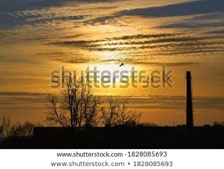 日没 雲 暗い 空 劇的な オレンジ ストックフォト © FOKA