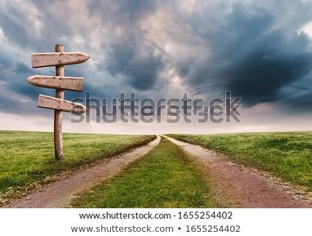 manier · vooruit · wegwijzer · hemel · Blauw · bewolkt - stockfoto © naumoid
