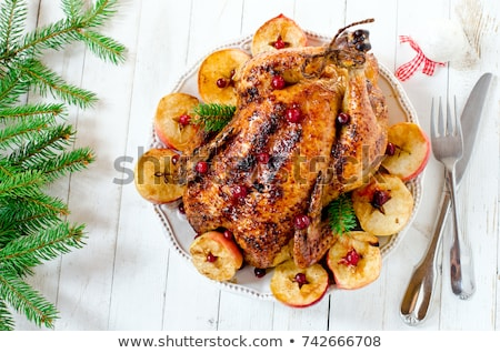 Baked chicken or turkey with cranberry Stock photo © furmanphoto