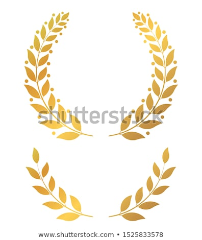 Golden laurel wreaths, round and half vector illustration Stock photo © Andrei_