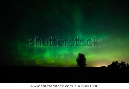 Night Sky Filled With The Aurora Northern Lights Stock photo © solarseven