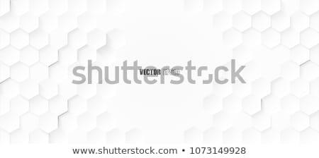 gray and white hexagonal pattern banner design Stock photo © SArts
