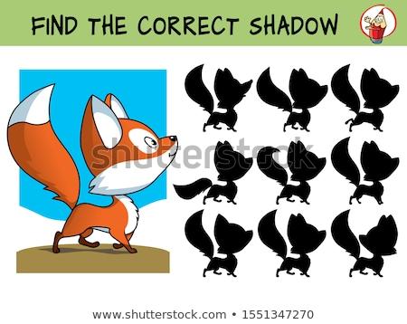 Sombra correspondente jogo crianças encontrar direito Foto stock © natali_brill