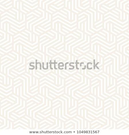 ベクトル シームレス パターン 現代 スタイリッシュ 抽象的な ストックフォト © samolevsky