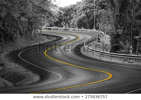 Czarny lasu znak autostrady zielone Chmura ulicy Zdjęcia stock © kbuntu