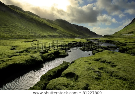 Stock photo: Green Scotland Valley in Spring