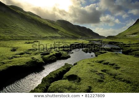Green Scotland Valley in Spring stock photo © mtilghma