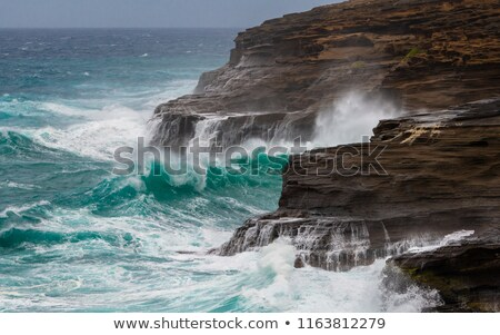 crashing waves off the coast of hawaii stock photo © backyardproductions