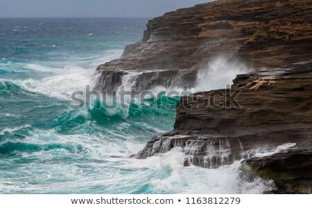 Crashing Waves off the coast of Hawaii Stock photo © backyardproductions
