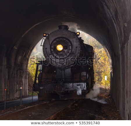 Steam locomotive enters tunnel Stock photo © backyardproductions