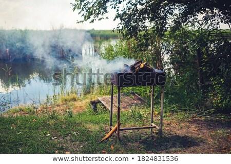 folyó · piknik · fa · égő · grill · tűz - stock fotó © Borissos