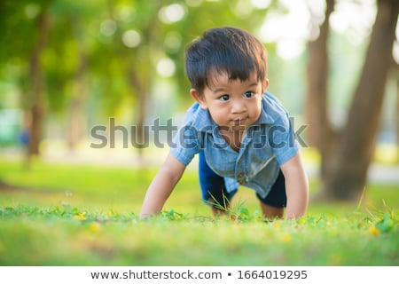 young boy outdoors on the grass at backyard stock photo © hasloo