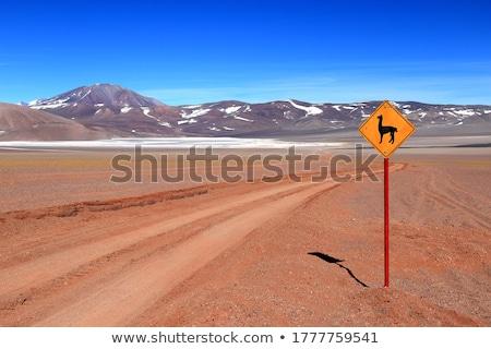Stock photo: Northwest of Argentina