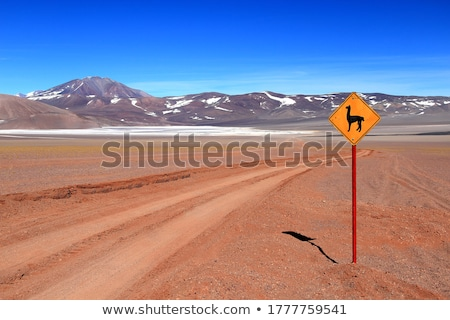 Nord-ouest Argentine large panorama désert région Photo stock © antonprado