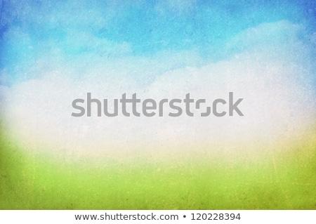 grunge · kép · zöld · mező · kék · ég · citromsárga - stock fotó © redpixel