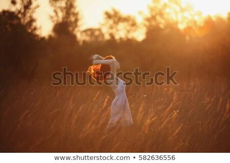 fiatal · vörös · haj · nő · fény · ruha · piros - stock fotó © gromovataya