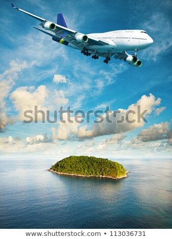 Jumbo jet over the tropical island. Vertical composition in high Stock photo © moses