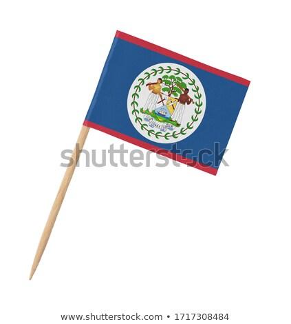 Miniatűr zászló Belize izolált vágási körvonal megbeszélés Stock fotó © bosphorus