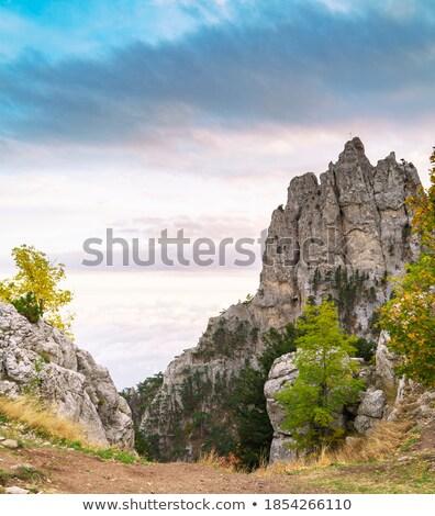 Mountains, sea, sky. Ukraine. Southern coast of Crimea.  Stock photo © acidgrey