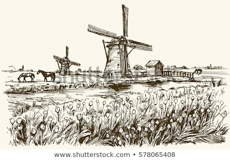 dutch landscape with horses water and windmill stock photo © ivonnewierink