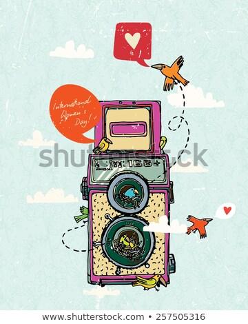 Two vintage two lens photo camera Stock photo © gavran333