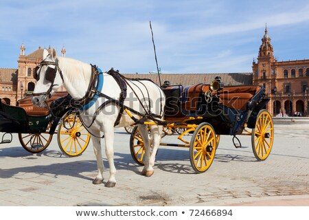 andalusian carriage Stock photo © jarp17