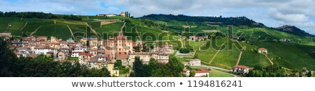 Medieval castle and vineyards in Piedmont, Italy. Stock photo © rglinsky77
