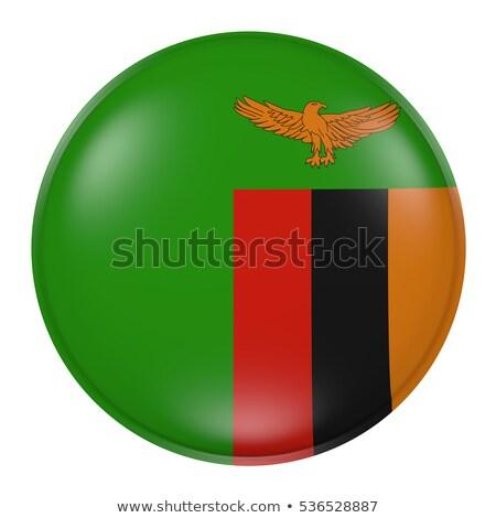 кнопки Замбия карта флаг Африка стране Сток-фото © Ustofre9