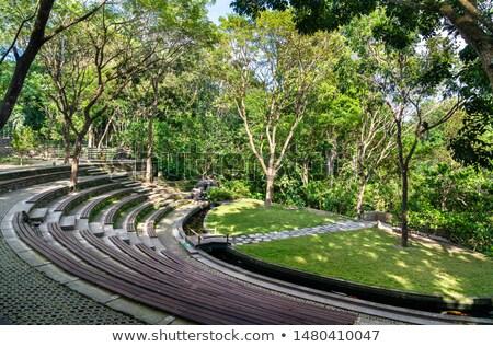 seats in ancient amphitheater stock photo © mikko