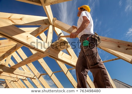 Residential Construction Stock photo © Lightsource