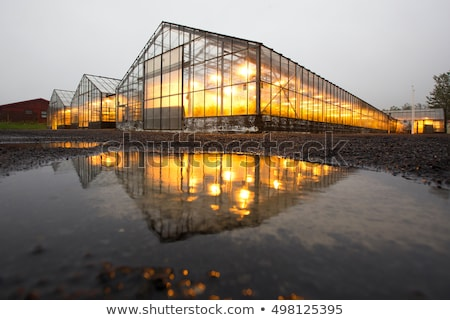 geothermal energy plant in interior of iceland Stock photo © travelphotography
