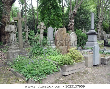 cimetière · vieux · noir · corbeau · croix · fond - photo stock © chrisdorney