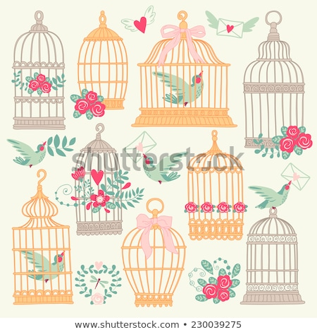 decorative birdcages vector stock photo © beaubelle