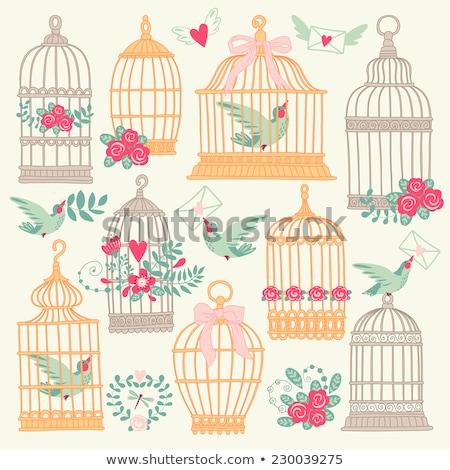 aranyos · madarak · szett · klasszikus · kacsa · csirke - stock fotó © beaubelle