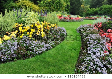 Garden landscaping, Springtime Stock photo © Julietphotography