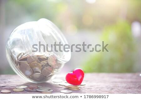 Opslaan hart vector cartoon illustratie aarde Stockfoto © ddraw