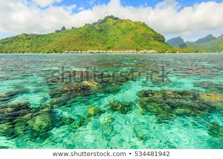 Port of Papeete, French Polynesia Stock photo © marco_rubino
