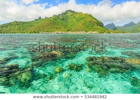 ポート · フランス語 · ポリネシア · タヒチ島 · ビーチ · 水 - ストックフォト © marco_rubino
