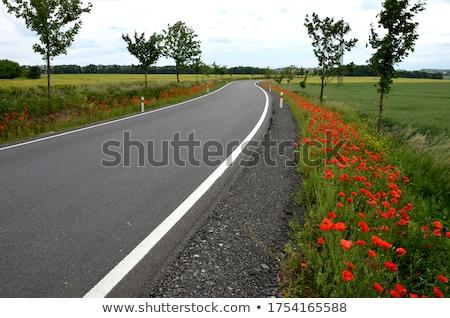 Estrada reconstrução asfalto preparado nuvens Foto stock © simazoran