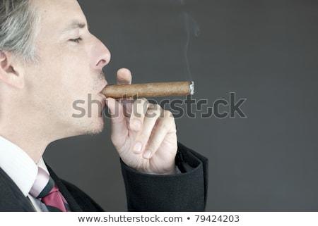 Sexy · сигару · Солнцезащитные · очки · красный - Сток-фото © fisher