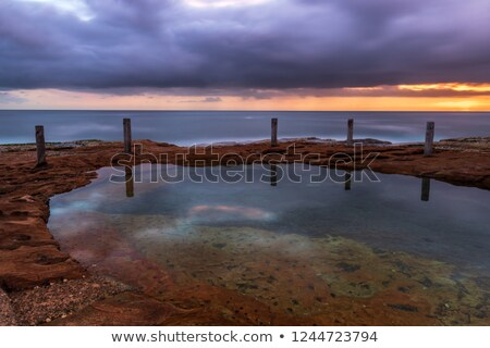 sunrise at ivo rowe rockpool coogee stock photo © lovleah