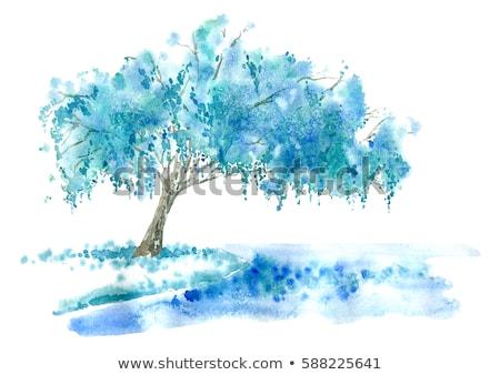 水彩画 実例 ツリー バラ 紙 手 ストックフォト © artibelka