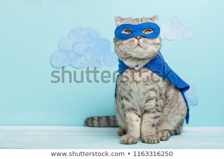 funny animals superheroes stock photo © ensiferrum