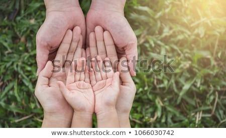hombre · hierba · gesto · manos · naturaleza · campo - foto stock © Paha_L